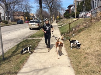 The Rescue Gang Redefines Milwaukee Animal Rescue