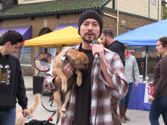 Pets Take over Brady Street for Good Times and a Great Cause