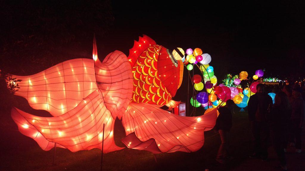 boerner chinese lanterns