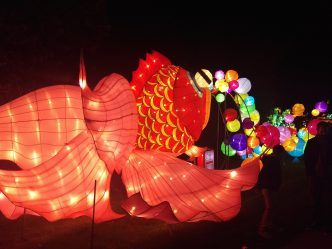 Huge Chinese Lanterns Return to Boerner Botanical Garden